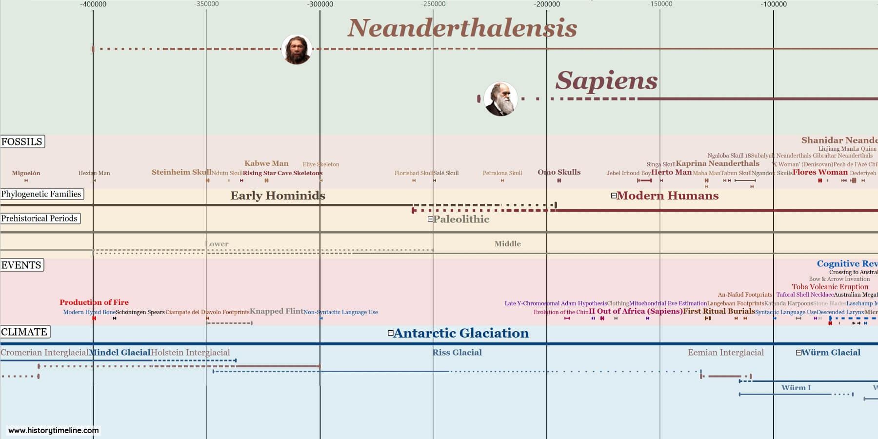 Neanderthals and Homo Sapiens timeline