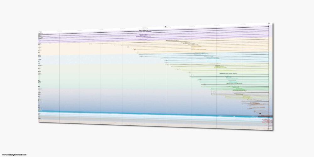 Evolution of Life on Earth Chart
